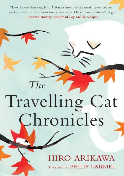 thetravellingcatchronicles